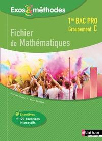 Jean-Luc Dianoux et Muriel Dorembus - Fichier de mathématiques 1re Bac Pro Groupement C.