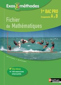 Jean-Luc Dianoux et Muriel Dorembus - Fichier de mathématiques 1re Bac pro groupements A et B.