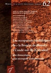 """Jean-Luc Dron et François Charraud - Les occupations néolithiques de """"la Bruyère du Hamel"""" à Condé-sur-Ifs (Calvados) - Site domestique, puis nécropole monumentale."""