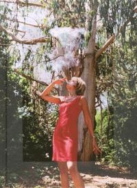 Jean-Luc Fournier - Eucalyptus.