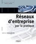 Jean-Luc Montagnier - Réseaux d'entreprise par la pratique.