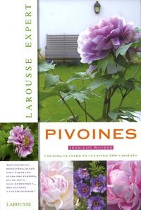 Jean-Luc Rivière - Pivoines.