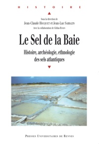 Jean-Luc Sarrazin et Jean-Claude Hocquet - Le Sel de la Baie - Histoire, archéologie et ethnologie des sels de l'Atlantique.