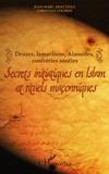 Jean-Marc Aractingi et Christian Lochon - Secrets initiatiques en Islam et rituels maçonniques - Druzes, Ismaéliens, Alaouites, confréries soufies.