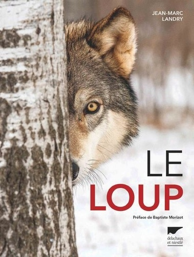 Jean-Marc Landry - Le loup.
