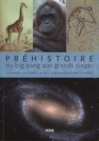 Jean-Marc Perino - Préhistoire, du big bang aux grands singes - L'univers, la Terre, la vie, la biosphère avant l'Homme.