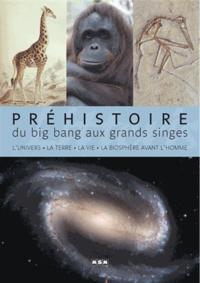 Jean-Marc Perino - Préhistoire - Du Big bang aux grands singes.
