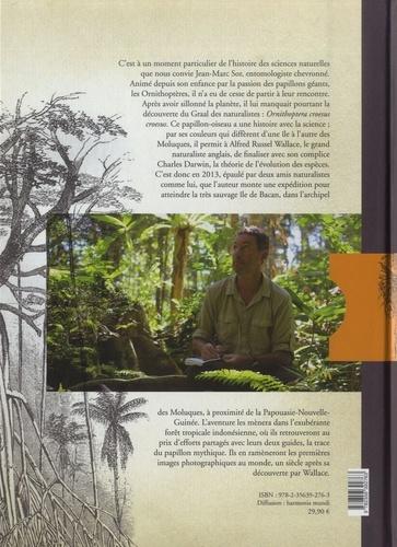 Les aventuriers de l'évolution. A la recherche des papillons géants d'Asie et d'Océanie