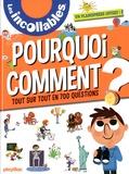 Jean-Michel Billioud et Sophie Bordet-Petillon - Pourquoi, Comment ? - Tout sur tout en 700 questions.