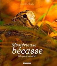 Jean-Michel Desplos - Mystérieuse bécasse - Elle passe et séduit....