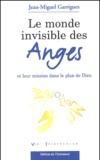 Jean-Miguel Garrigues - Le monde invisible des anges et leur mission dans le plan de Dieu.