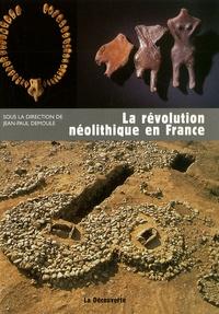Jean-Paul Demoule et Richard Cottiaux - La révolution néolithique en France.