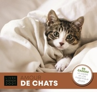 Jean-Paul Viart - Amour de chats - Avec en cadeau un cadre et une magnifique photo.