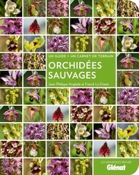 Jean-Philippe Anglade - Orchidées sauvages.