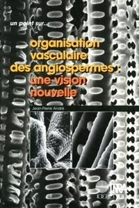 Goodtastepolice.fr Oraganisation vasculaire des angiospermes : une vision nouvelle Image