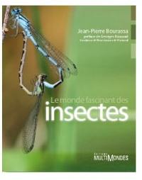 Ucareoutplacement.be Le monde fascinant des insectes Image