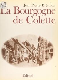 Jean-Pierre Brésillon et Thierry Brésillon - La Bourgogne de Colette.