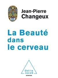 Deedr.fr La beauté dans le cerveau Image