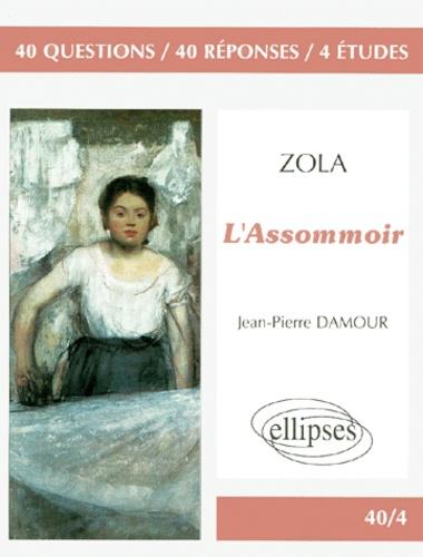 """Jean-Pierre Damour - Zola, """"L'assommoir"""" - 40 questions, 40 réponses, 4 études."""