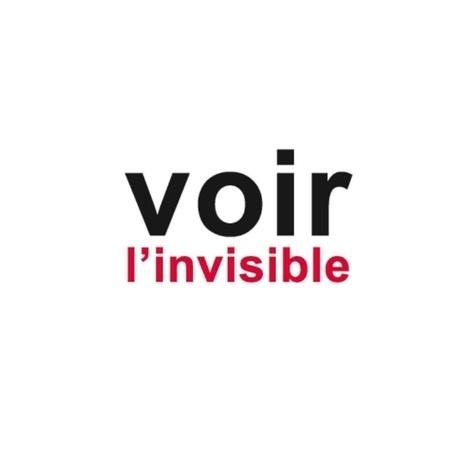 Jean-Pierre Gex - Voir l'invisible - Tome 2, Comprendre, Agir.