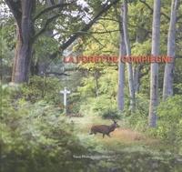 Jean-Pierre Gilson - La forêt de Compiègne.
