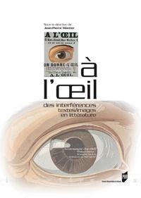 Jean-Pierre Montier - A l'oeil - Des interférences textes/images en littérature. 1 DVD