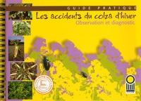 Jean-Pierre Palleau et  Collectif - Guide pratique - Les accidents du colza d'hiver.