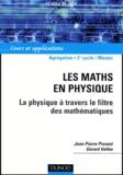 Jean-Pierre Provost et Gérard Vallée - Les maths en physique - La physique à travers le filtre des mathématiques.