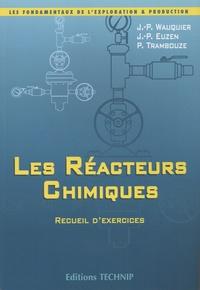 Jean-Pierre Wauquier et Jean-Paul Euzen - Les réacteurs chimiques - Recueil d'exercices.