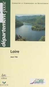 Jean Tibi et Pascal Clément - Loire.