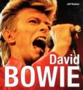 Jeff Hudson - David Bowie.