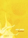 Jeff Noon - Pollen.