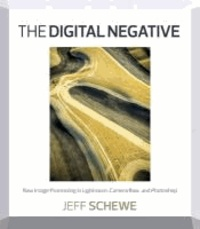 Jeff Schewe - The Digital Negative - Raw Image Processing in Lightroom, Camera Raw, and Photoshop.