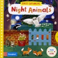 Jenny Wren - Night Animals.