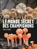Jens H Petersen - Le monde secret des champignons.