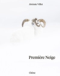 Jérémie Villet - Première neige.