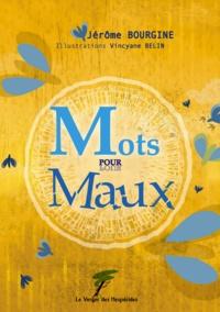 Jérôme Bourgine - Mots pour Maux.
