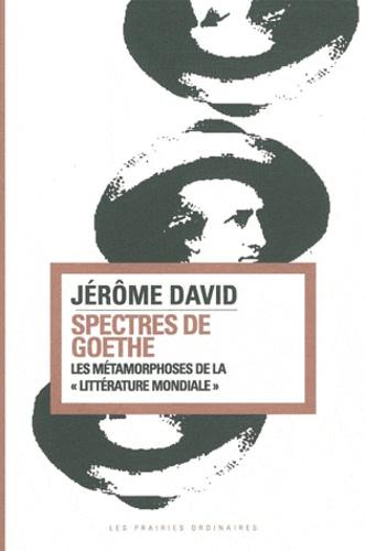 """Jérôme David - Spectres de Goethe - Les métamorphoses de la """"littérature mondiale""""."""