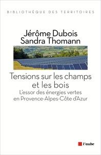 Corridashivernales.be Tensions sur les champs et les bois - L'essor des énergies vertes en Provence-Alpes-Côte d'Azur Image