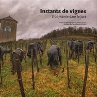 Deedr.fr Instants de vignes - Biodynamie dans le Jura Image