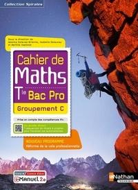 Jessica Estevez-Brienne et Isabelle Delaunay - Mathématiques Tle Bac Pro Groupement C Cahier de Maths Spirales.