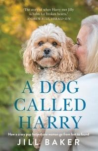 Electronics ebooks gratuits télécharger A Dog Called Harry 9780733642685