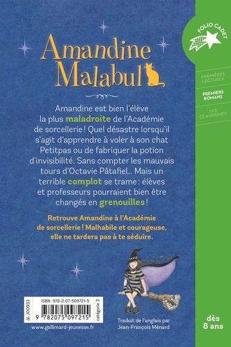 Amandine Malabul Tome 1 Sorcière maladroite