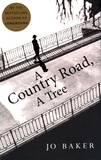 Jo Baker - A Country Road, A Tree.