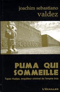 Joachim Sebastiano Valdez - Puma qui sommeille.