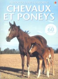 Deedr.fr Chevaux et poneys Image