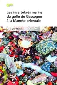 Accentsonline.fr Les invertébrés marins du golfe de Gascogne à la Manche orientale Image