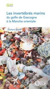 Jocelyne Martin - Les invertébrés marins du golfe de Gascogne à la Manche orientale.