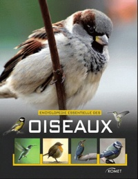 Jochen Dierschke et Volker Dierschke - Encyclopédie essentielle des oiseaux.