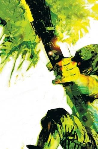 Green Arrow  Année un